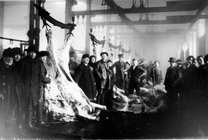 Всередині міської бійні, 1920-ті рр.