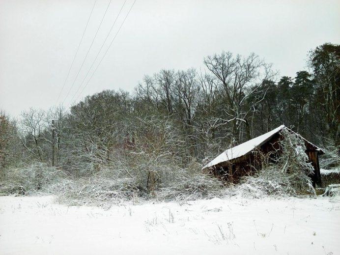 Зимовий пейзаж у парку, фото Ірина Хлян.