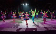 Шоу-балет «Атлантік»