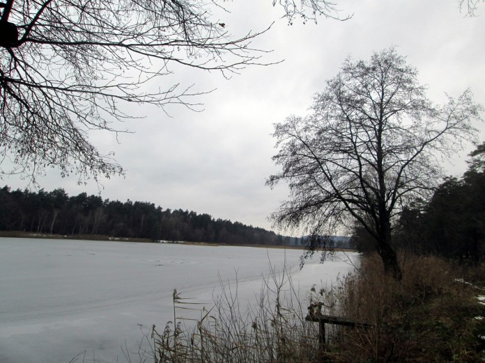 Озеро на базі відпочинку ''Майдан''. Фото Мар'яни Іванишин