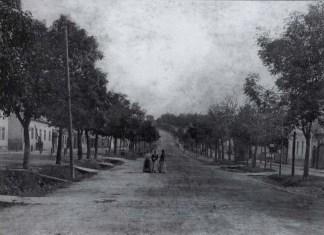 """Початок """"цісарської дороги"""" на Золочів (Верхній Личаків). Фото 1890-х років"""