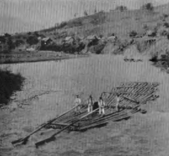 Сплав лісу по Черемошу. 1870-ті рр.