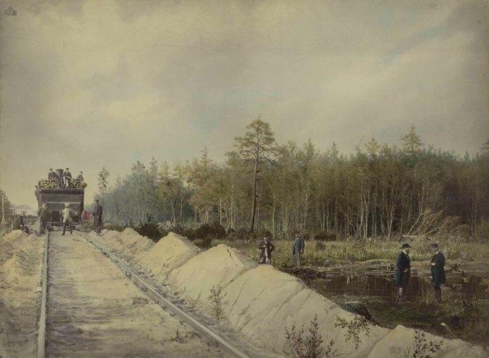 Залізниця йщла через поліські болота. Фотограф Конрад Бандель, 1880-і рр.