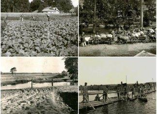 Підмонастирок на Радехівщині 100 років тому