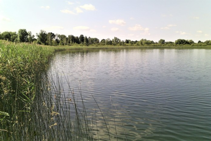 Озеро Перевирське