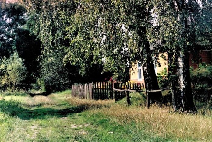 Вулиця Олександрівка у селі Поляна. 2004. Тут і далі фото з http://sites.google.com/site/volynskiegolendry