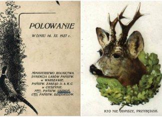 Як організовували полювання для гостей у Галичині кінця ХІХ- початку ХХ ст.
