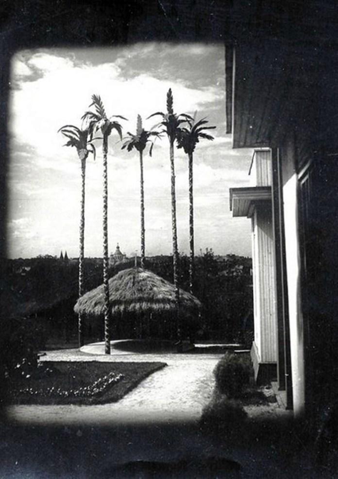 Майданчик під пальмами на Торгах