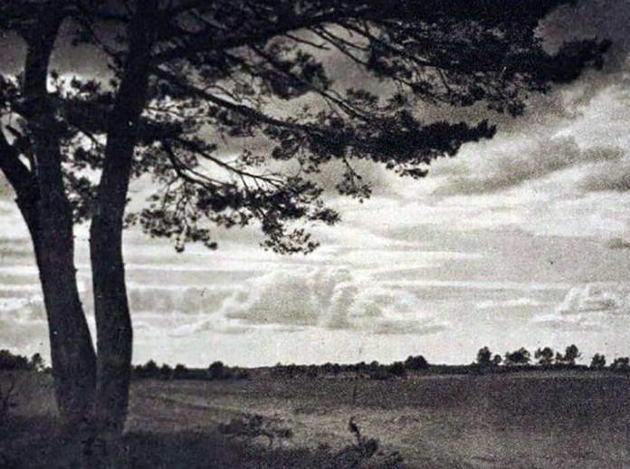 Поліський краєвид, 1920-і роки