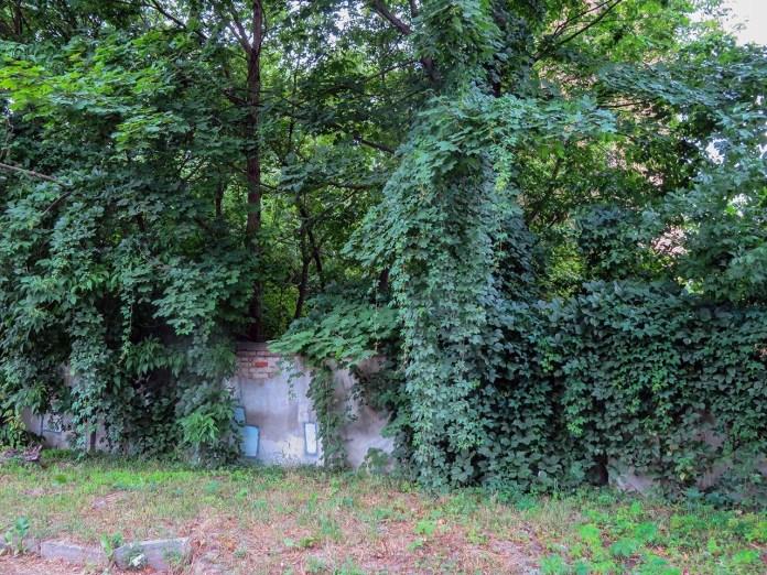 Місце, де знаходився єврейський цвинтар (вул. Боткіна)