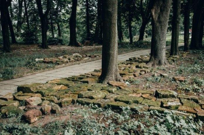 Фрагменти надгробних пам'ятників з єврейського кладовища. Фото: Бюро спадщини