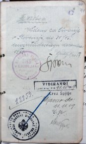 Паспорт громадянина Української Народної Республіки Петра Франка.