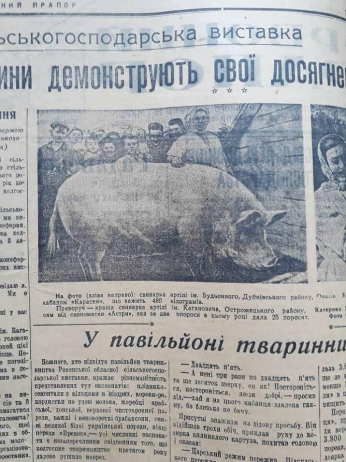 """Газета """"Червоний прапор"""", 1954 рік"""