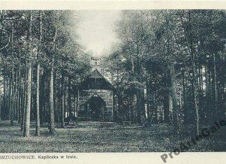 Брюховичі, капличка в лісі. Поштівка 1929 року