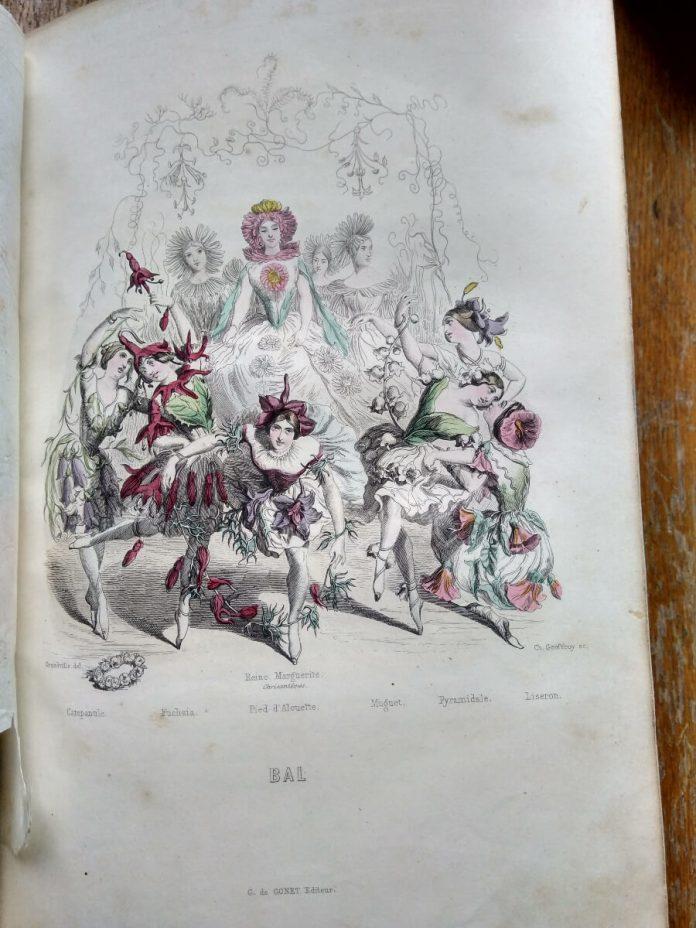 Бал квітів: Дзвіночок, Фуксія, Живокост, Конвалія, В'юнок, Маргаритка