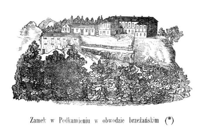 Замок в селі Підкамінь в 1859 році