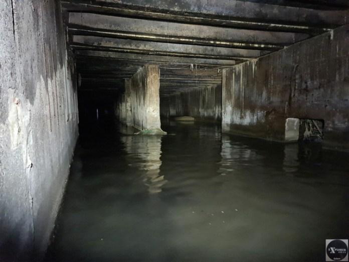 Перед очисними спорудами колектор роздвоюється і стає ще більшим! В лівій частині колектора води по груди.
