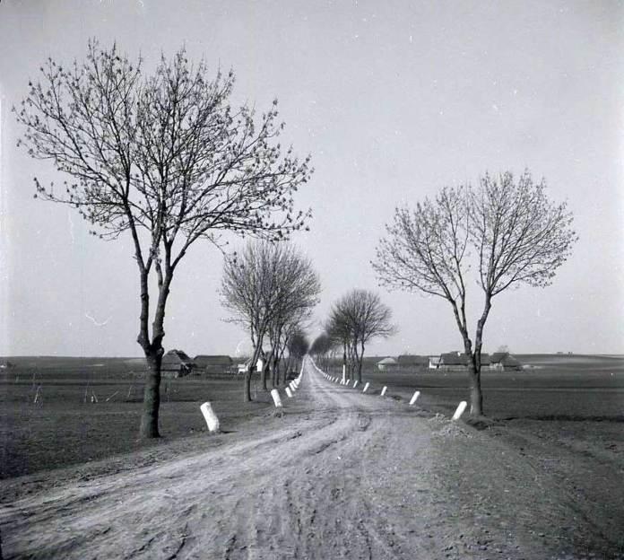 Дорога біля Олесько ( фото Юзеф Трешка)