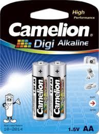 CamelionAA2.jpg
