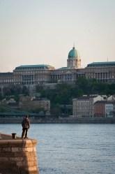 budapest_majestic