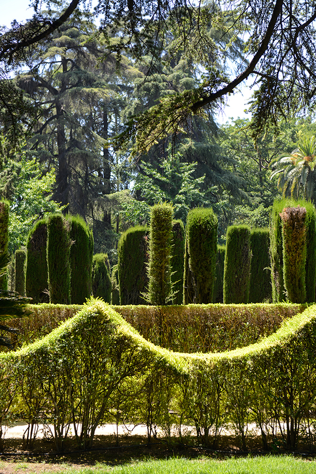 Garden of Alcazar of Seville