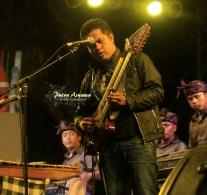 14-balawan-guitar