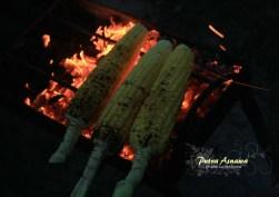 13-tanahlot-corn