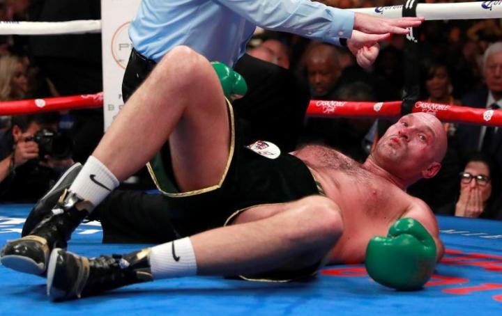 Image result for wilder fury knockout
