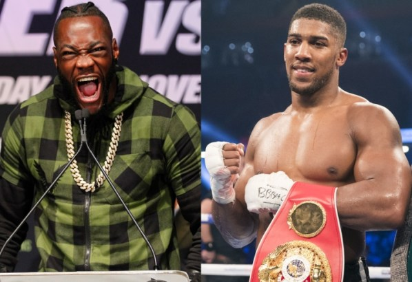 https://i2.wp.com/photo.boxingscene.com/uploads/wilder-joshua-1.jpg?w=598&ssl=1