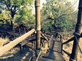 Ulusaba-Game-Reserve (5)