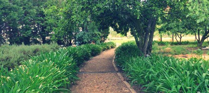 Rozendal Farm, Stellenbosch