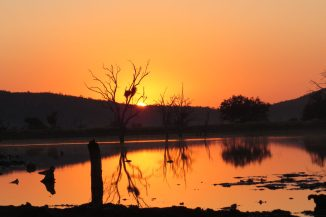 Sunrise-Madikwe Game Reserve
