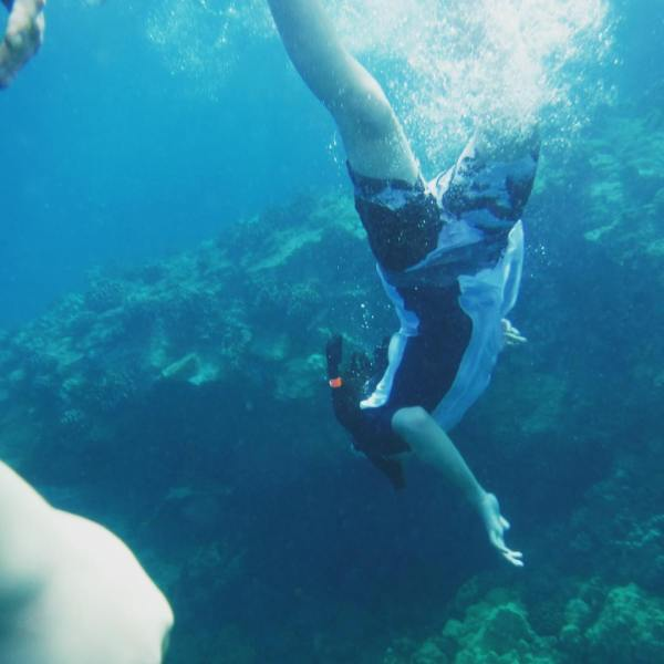 The Boy liked snorkeling