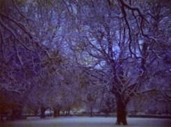film-037-013