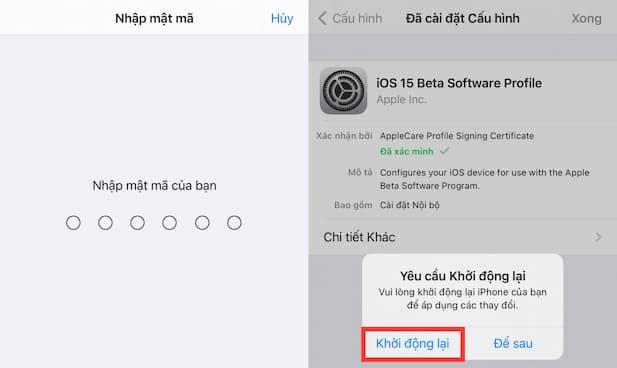 Download iOS 15 and iPadOS 15 Developer Beta 6