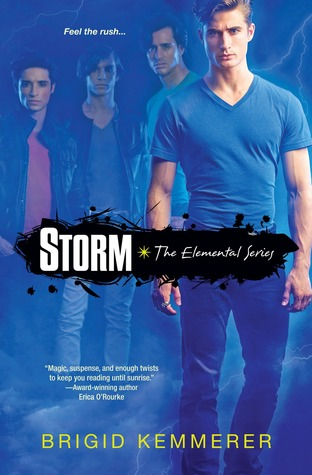 Book cover for Storm by Bridgid Kemmerer