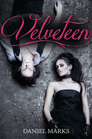 Book cover for Velveteen by Daniel Marks