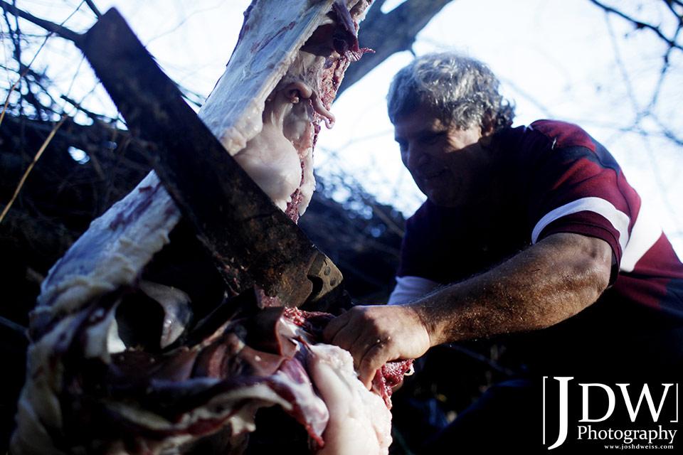 101010_JDW_Slaughter_1272