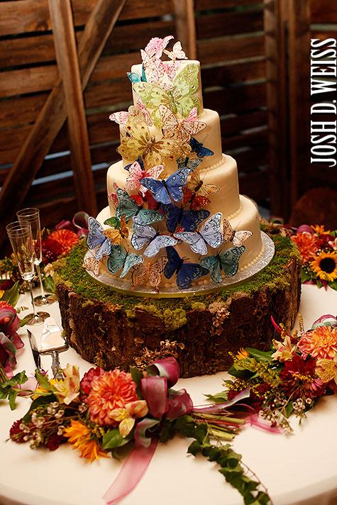 110903_JDW_Asheville-Wedding_1160