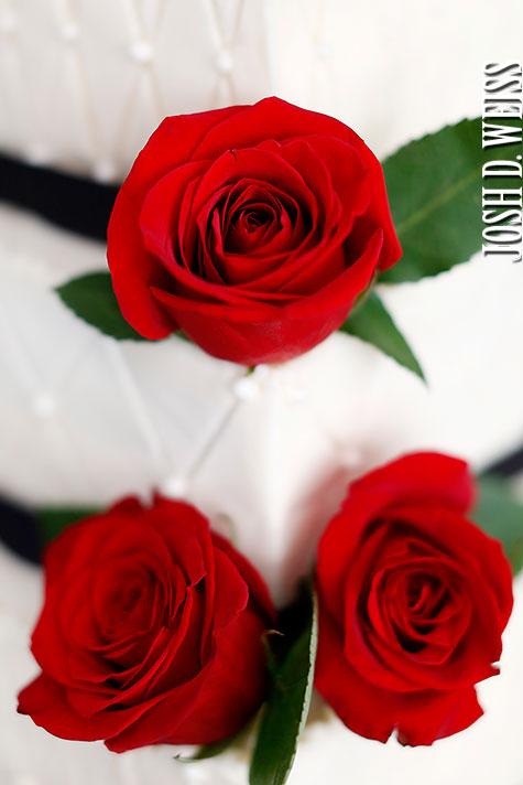120729_JDW_Wedding_1204