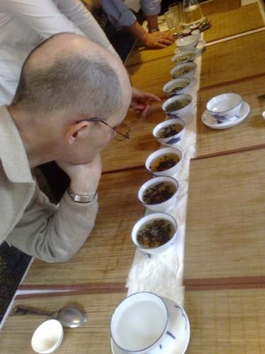 Watching Oolong Tea