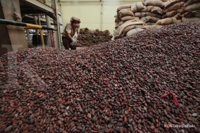 AIKI perkirakan impor kakao meningkat tahun ini
