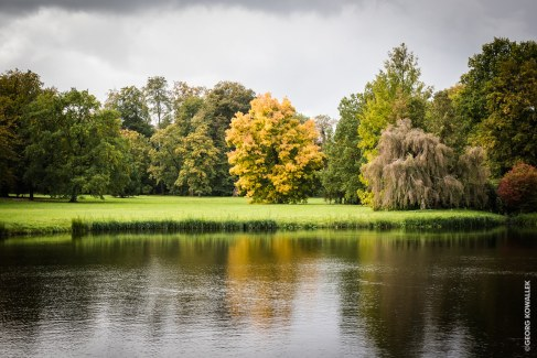Herbst, näherkommend