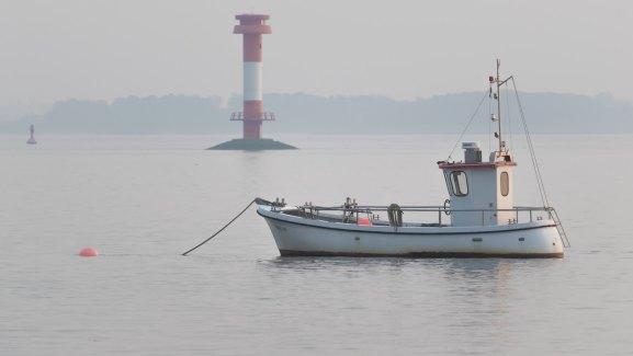 Die Elbe bei Kollmar, nebelig