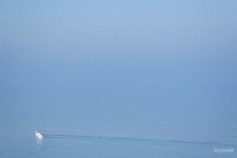 Ostsee im Nebel 3