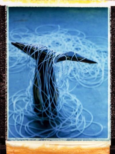 Still Life: Polaroid of Carving