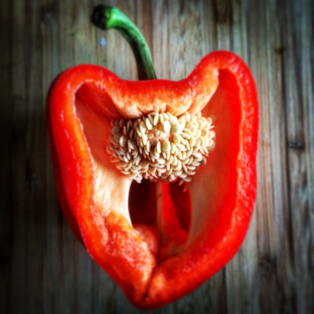 Still Life: Red Pepper