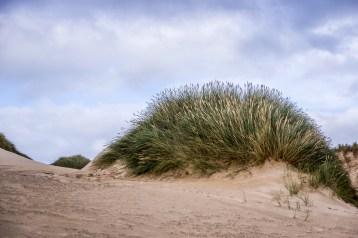An Fharaird Dunes Ⅱ
