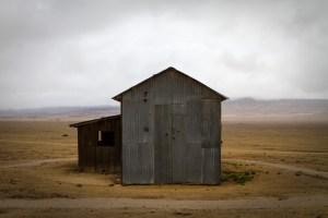 Carrizo Plain by Lori Carey