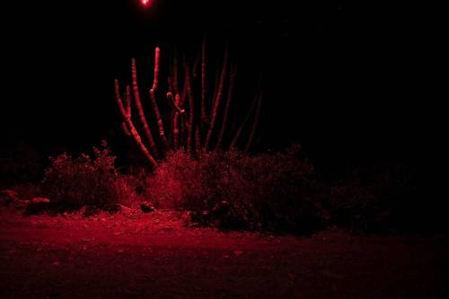 Paul Emus - Red Organ Pipes (illuminated with LumiCubes mounted on a drone)